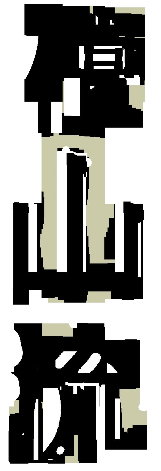 Danzan Ryu Jujitsu Kanji